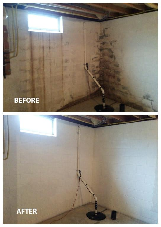 mold removal in Mount Joy PA